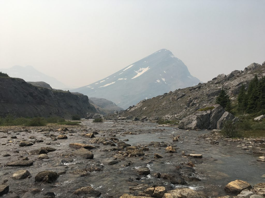 Four Point Campsite on the Brazeau Loop