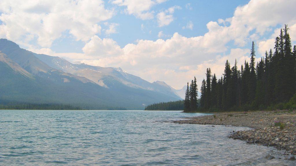 Brazeau Lake Campsite on the Brazeau Loop in Jasper