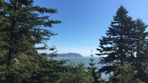 Fundy National Park trails