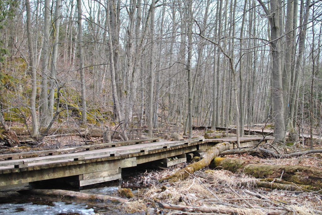 Silver Creek Conservation Area hike